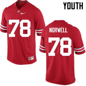 Youth Ohio State Buckeyes #78 Andrew Norwell Red College Football Jerseys 862765-744