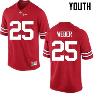 Youth Ohio State Buckeyes #25 Mike Weber Red College Football Jerseys 182112-334